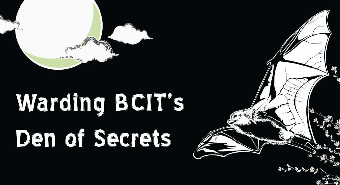 bcit confessions banner - bat flying at dead of night